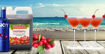 "SKYY Vodka & Juice cocktails: ""THE SEDUCER"" - Magalies Citrus"
